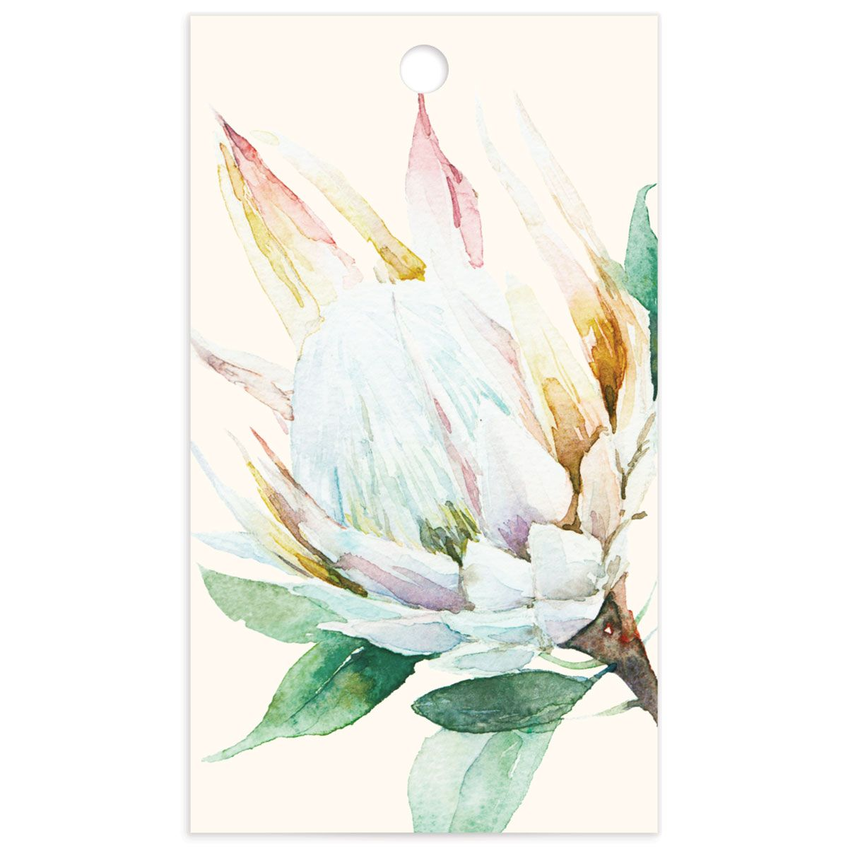 Palm and Protea Favor Gift Tags backer