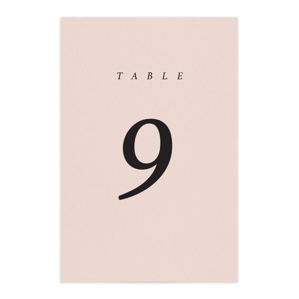 Natural Palette wedding table numbers in pink front