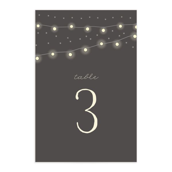 strung lights wedding table numbers