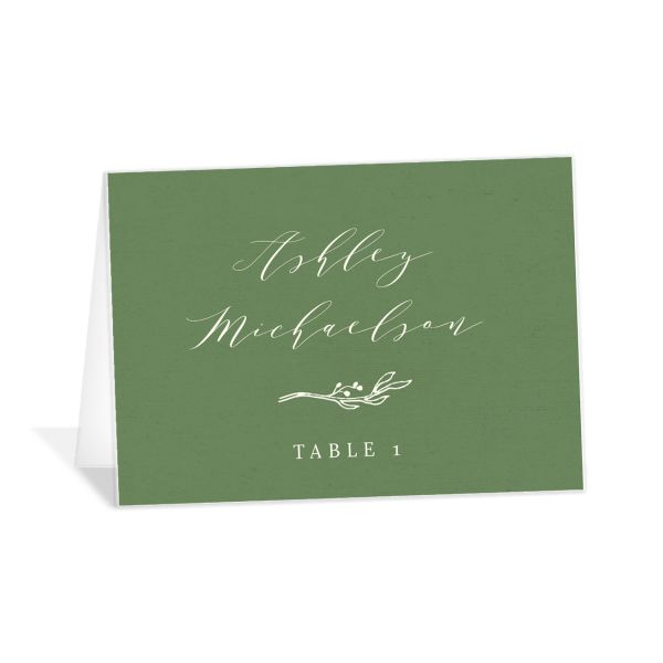 rustic elegance wedding place cards