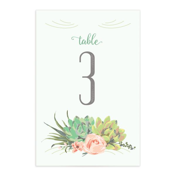 Romantic Succulents table number grn