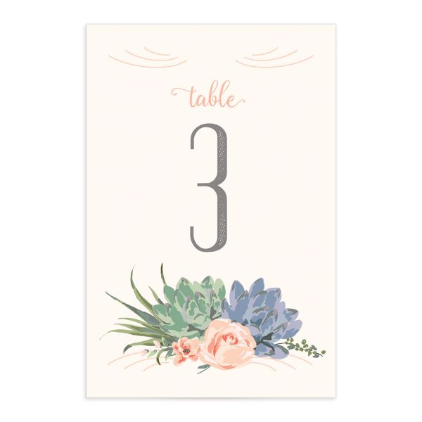 Romantic Succulents table number pnk