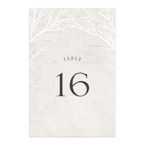 Rustic Birch wedding table number front