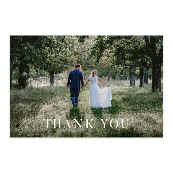 Painted Magnolia thank you postcard front catalog