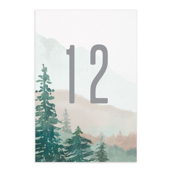 painted mountains wedding table number front in green