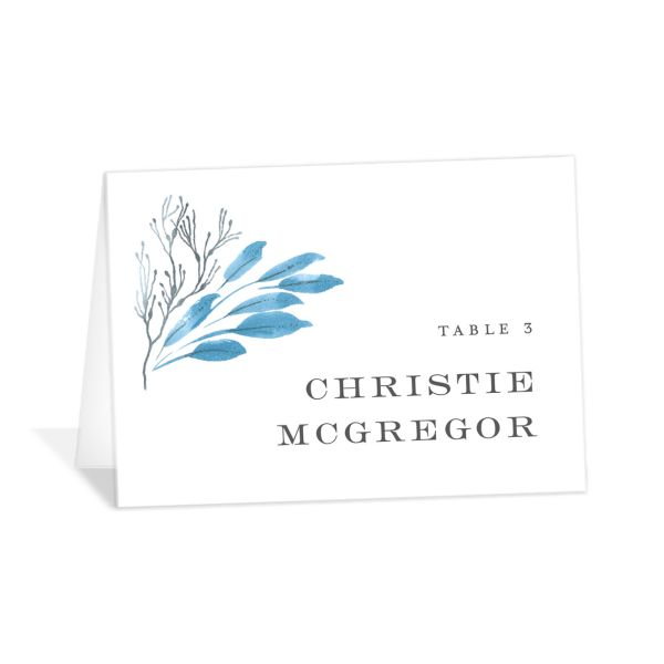 Elegant Beach place card blue