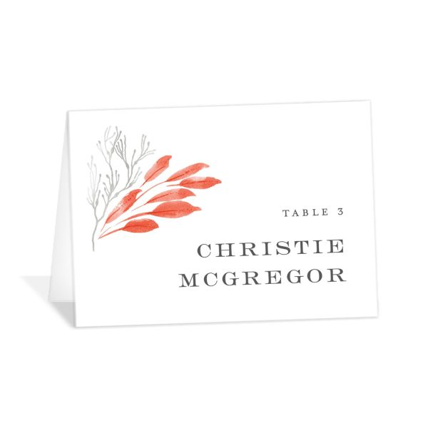 Elegant Beach place card pink