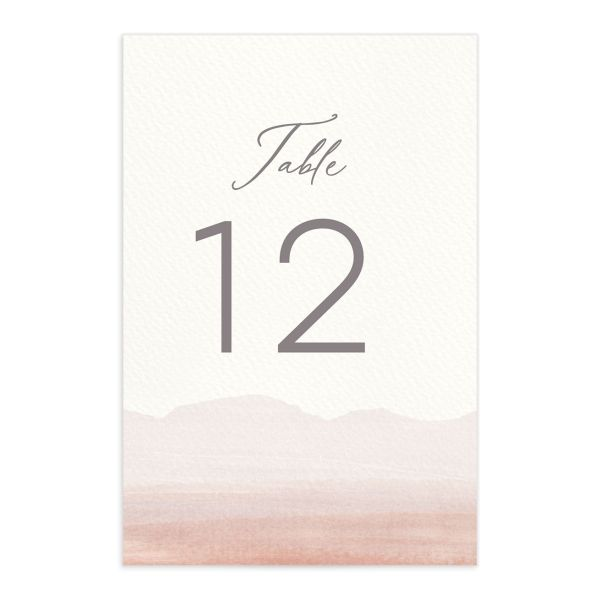 Painted Desert Wedding Table Numbers Front Pink