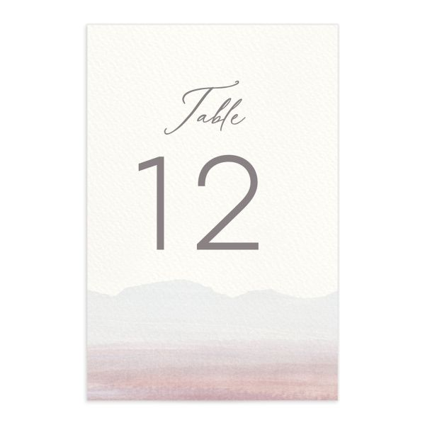 Painted Desert Wedding Table Numbers Front Purple