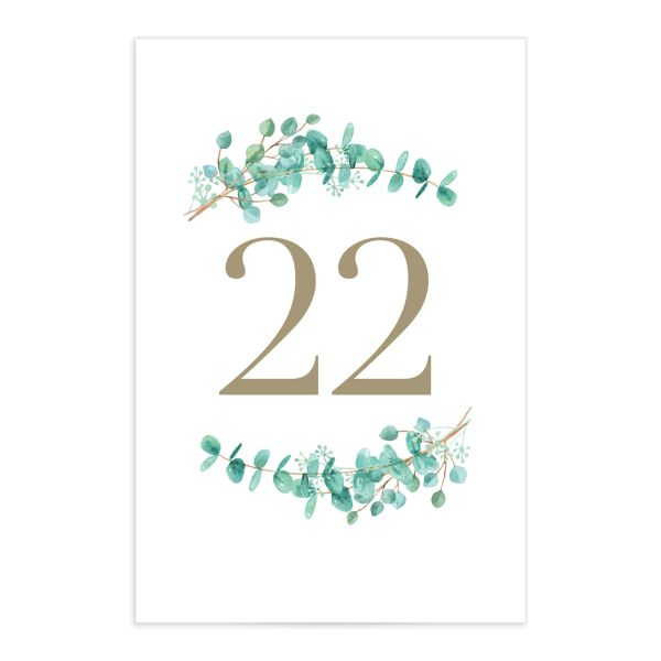 Elegant Eucalyptus table number front