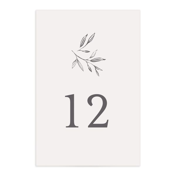 Minimal Leaves table number front