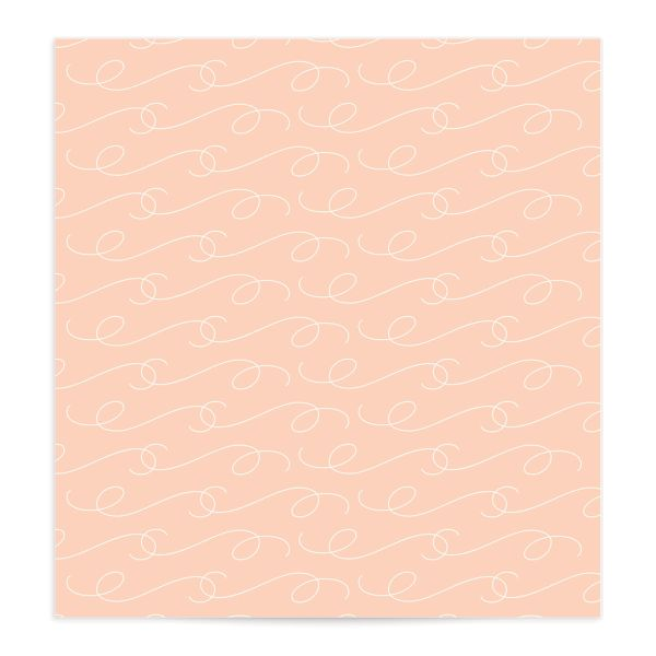Romantic Succulents envelope liner pink