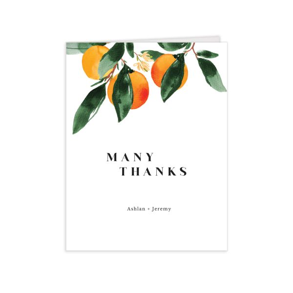 Orange Citrus Thank You Cards