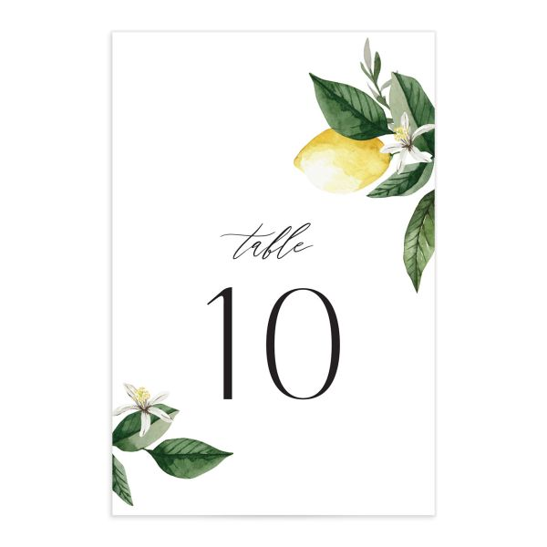 Botanical Lemon Wedding Table Number front