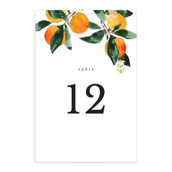 Orange Citrus Table Numbers front