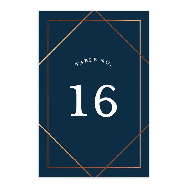 Formal Ampersand Wedding Table Number front blue