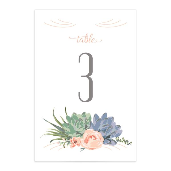 Romantic Succulents table number front pink