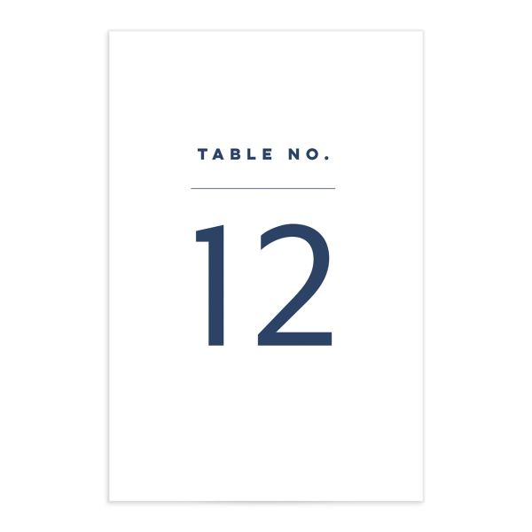Garden Picnic Wedding Table Number front in blue