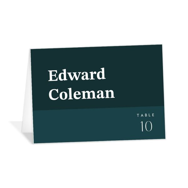 Traverse Type Place Card in teal