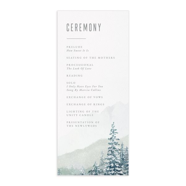 Painted Mountains Wedding Program front in teal