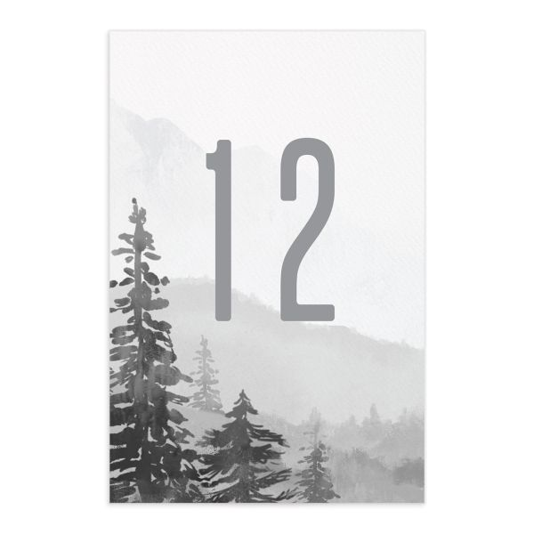 Painted Mountains Table Number front in grey