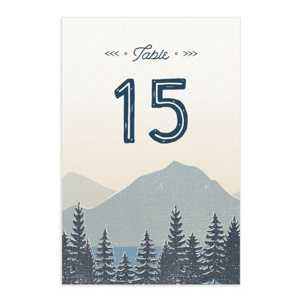 Vintage Mountain table number card front in blue
