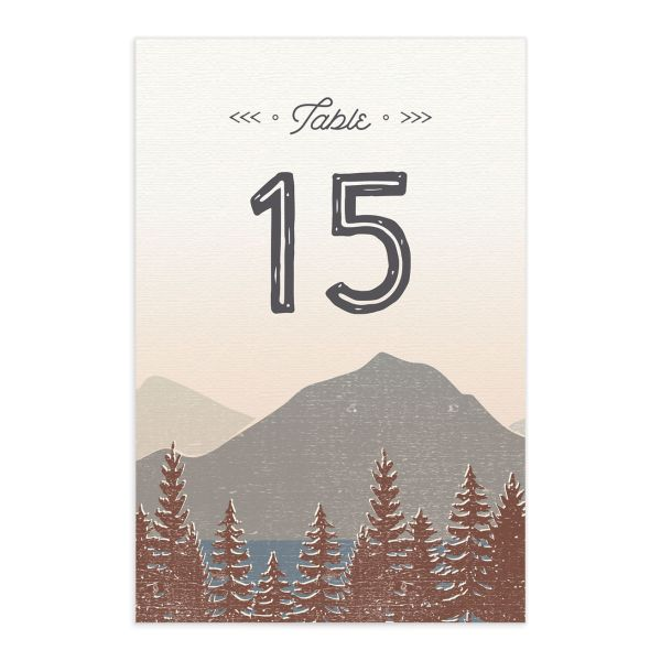 Vintage Mountain table number card front in brown