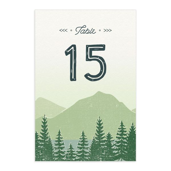 Vintage Mountain table number card front in green