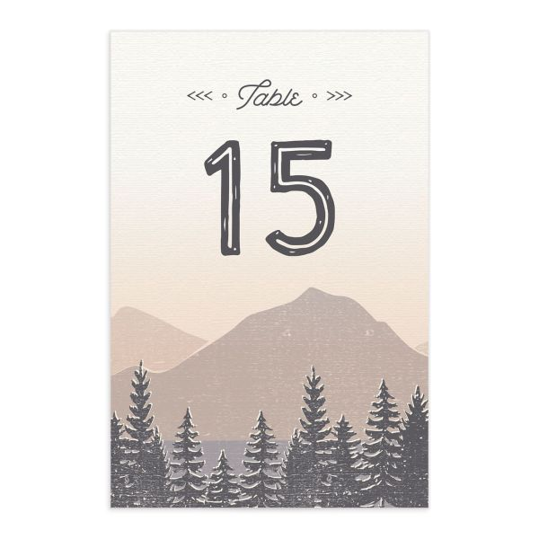 Vintage Mountain table number card front in grey