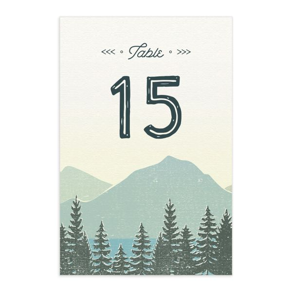 Vintage Mountain table number card front in teal