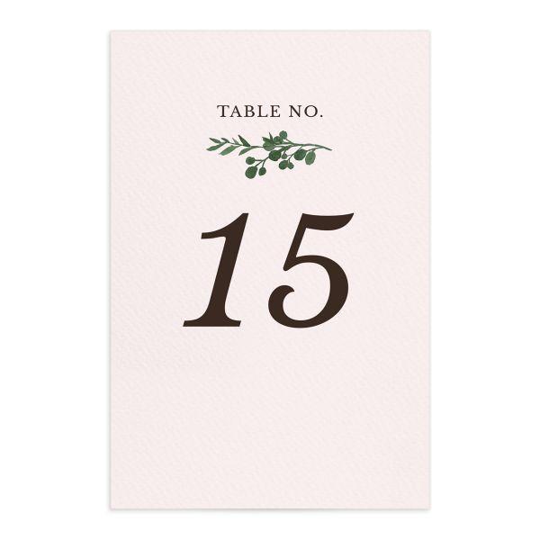 Leafy Hoops Table Numbers